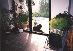 Hodyně 2001